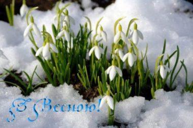 С Первым Днем Весны! Хорошего настроения!